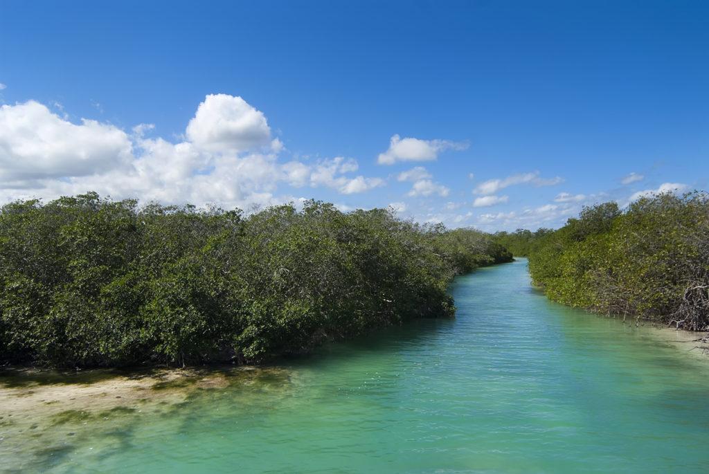 La réserve de Sian Ka'an dans la péninsule du Yucatan